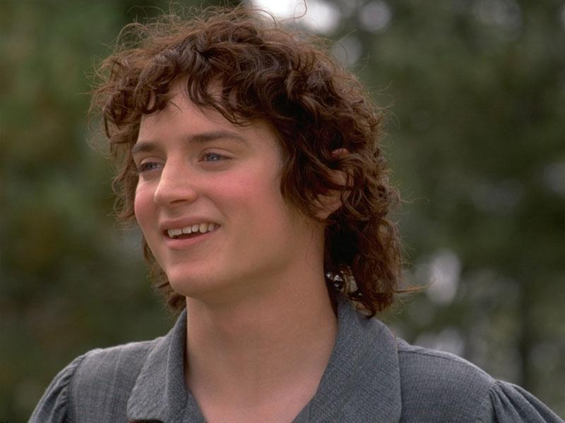 Frodo Baggins of the Shire